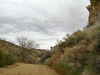 Jawbone Station OHV Trail Hiking