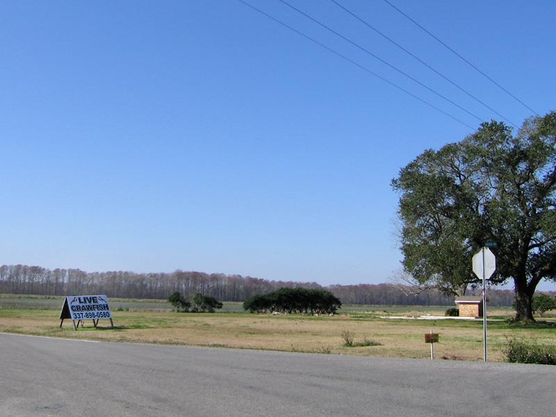 10. Abbeville, Louisiana scene