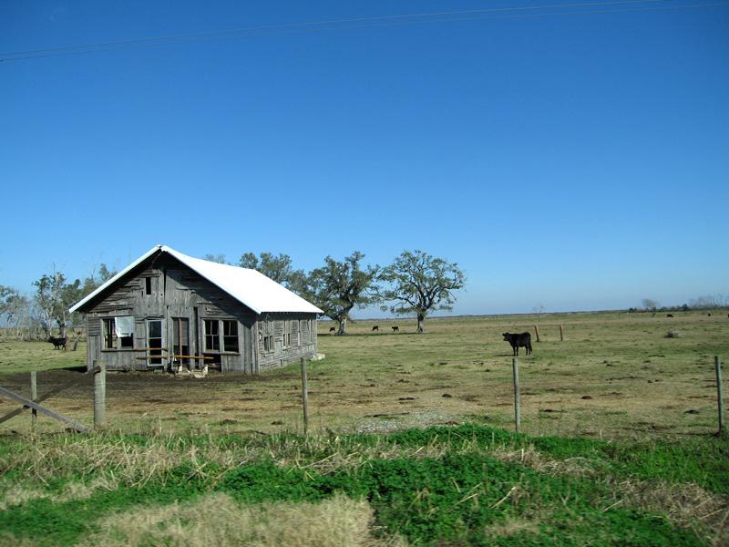 Cajun country, Acadiana LA