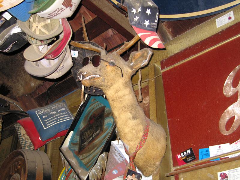 02. Luckenbach saloon stuffed deer head