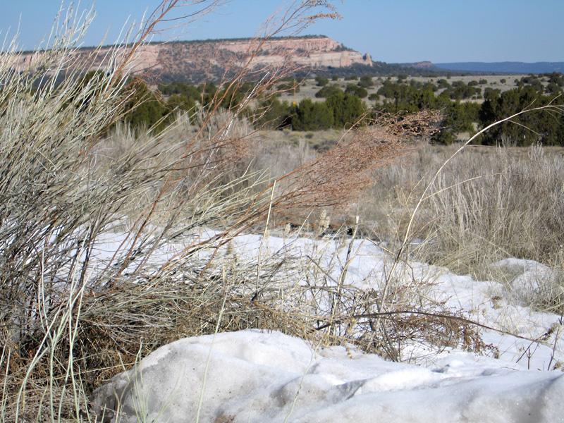 03. Winter at el Morro, New Mexico