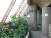 Earthship garden Taos NM