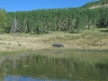 Old Blue will get you to joe Bob Lake at Vickers upper ranch