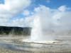 Geyser Erupting Yellowstone National Park
