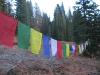 Tibetan Prayer Flags in Mt. Shasta Forest