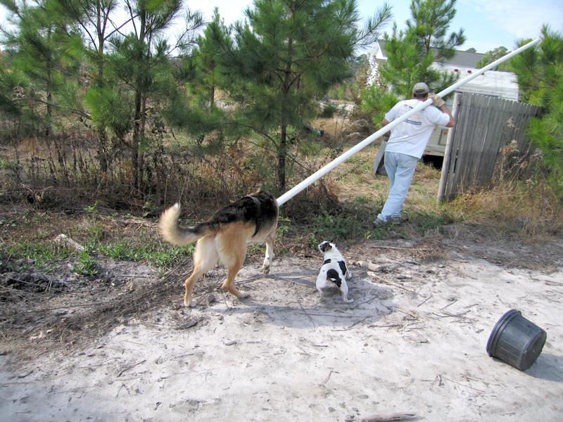 Working around the rescue