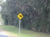 Bear Crossing Sign on Highway 16