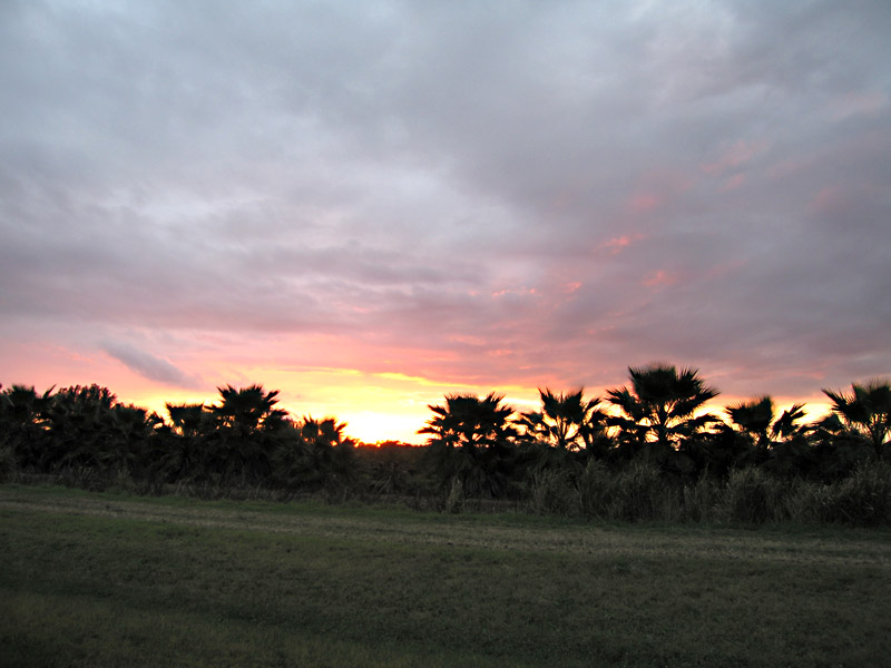 Florida sunset over White Rabbit Acres