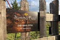 Summerfield Vineyards Harvest Hosts
