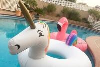 Whittier Pool Float Toys
