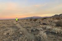 FOY Desert Running Trail
