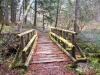 Moss Covered Footbridge - Westfir, Oregon