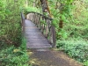 Westfir Oregon Forest Trail Bridge