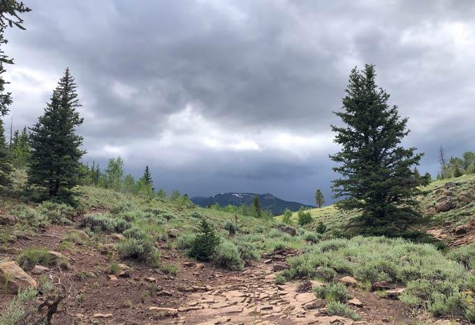 CORA Hiking Trail