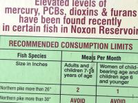 Noxious Poisonous fish from Noxon River, Montana