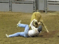 Sweetwater Texas Rodeo Shoot Dogging