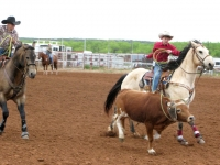 Sweetwater Texas Rodeo Teen Team Roping