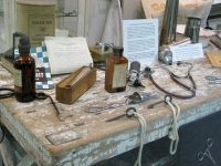 Missouri Veterinary Medical Foundation Museum