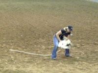 Sweetwater Texas Rodeo Goat Tying