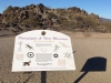 Petroglyphs at Painted Rock Campground Gila Bend, AZ