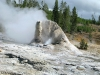 Steam from Giant Geyser Yellowstone National Park