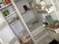 Cleaning Scary Moldy Foreclosure Home Fridge