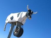 Flying Rodeo Roping Dummy Marathon, TX