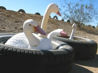 Slab City East Jesus Tire Decoys
