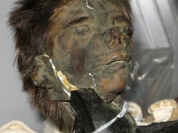 Shrunken Monkey Head MSU Anthropology Museum