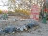 Slab City Pet Cemetery Grave Marker