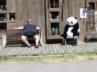 Lake City Colorady Fat Man and Panda