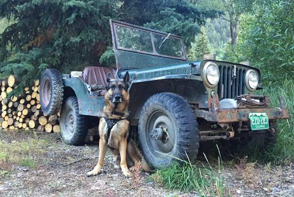 Vickers Ranch Jeep