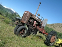 Antique Farmall still works the Vickers hay meadows