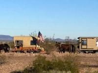 Mule Wagon with Trailer in Gila Bend, AZ