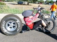 Fat Tire Bike at 2010 Tour de Fat