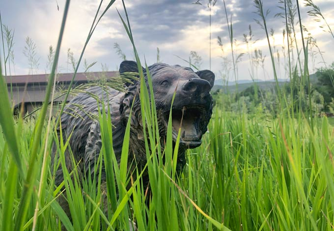 Bear Statue in Laporte Grass