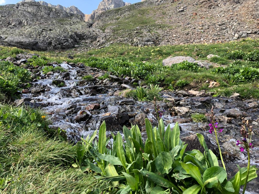 American Basin Stream Crossing Colorado