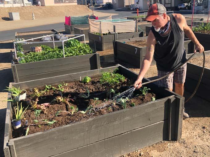 Our 2020 FOY Garden Box
