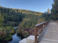 Bizz Johnson Trail
