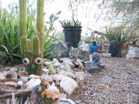 Slab City Grotto Art Garden Cacti