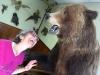 Hyder Alaska History Museum Taxidermy, Bear Mount