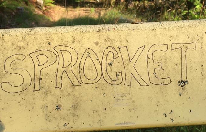 Westfir Trail Run Graffiti