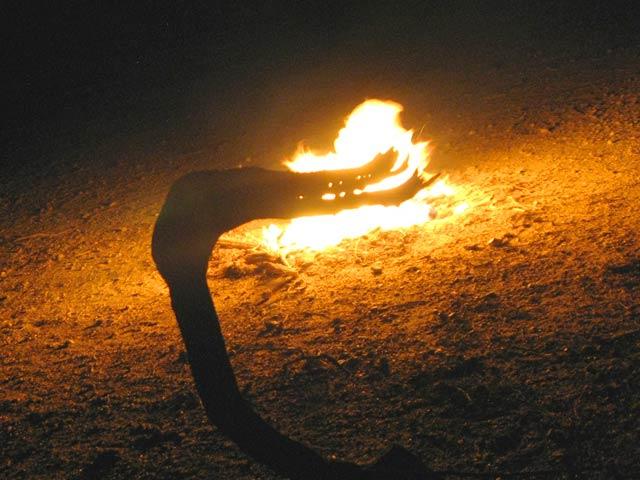 Fire Breathing Slab Dragon