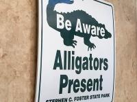 Alligator Warning Sign RV Art