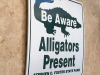 Alligator Warning Sign RV Art