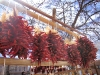 Dried chiles hanging in Santa Fe, NM