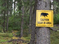 Tumbler Ridge Trail Bear Warning