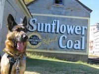 Old Sunflower Coal Sign and Wyatt, Texas Dog