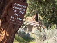 Lake Shastina Camping Closed, Day Use Only