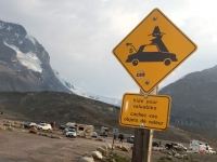 Athabasca Glacier Icefields Warning